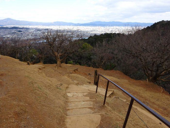 京都市街地 眺望