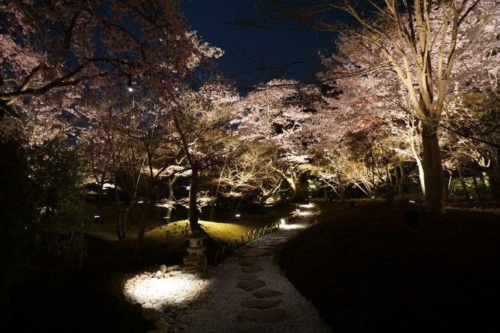 東山山頂 庭園