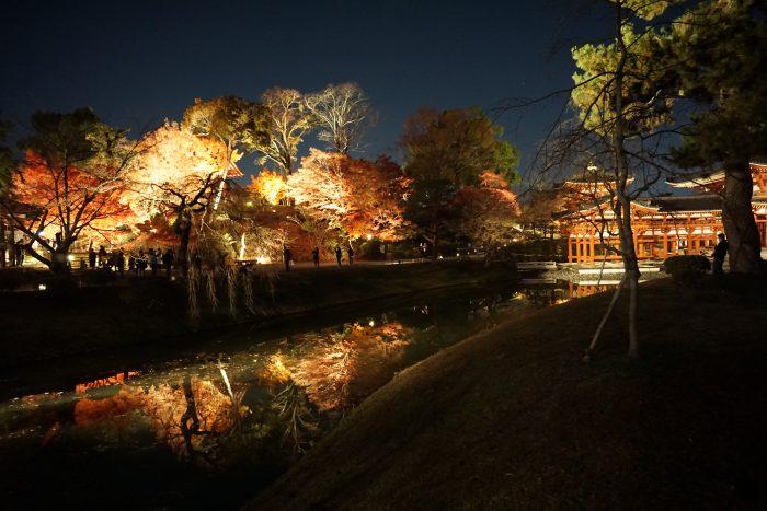 京都 紅葉ライトアップ